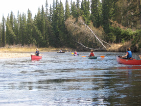 Upper Chena Paddle and Potluck, 2010